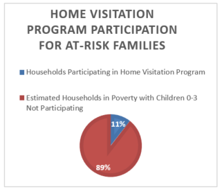 Home Visitation Program Participation for At-Risk Families